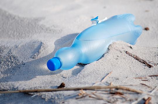 Gdańsk bez plastiku. Nasze miasto dba o naturę i wspiera proekologiczne postawy